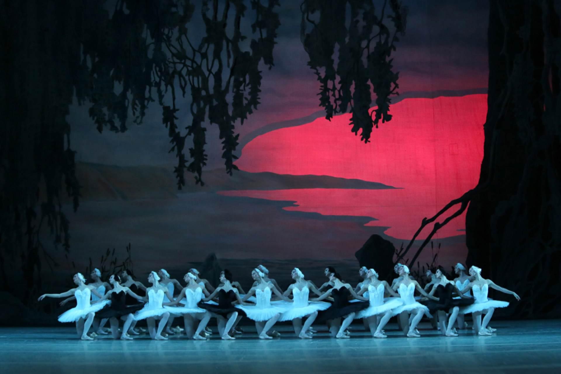 Swan Lake | Ballet